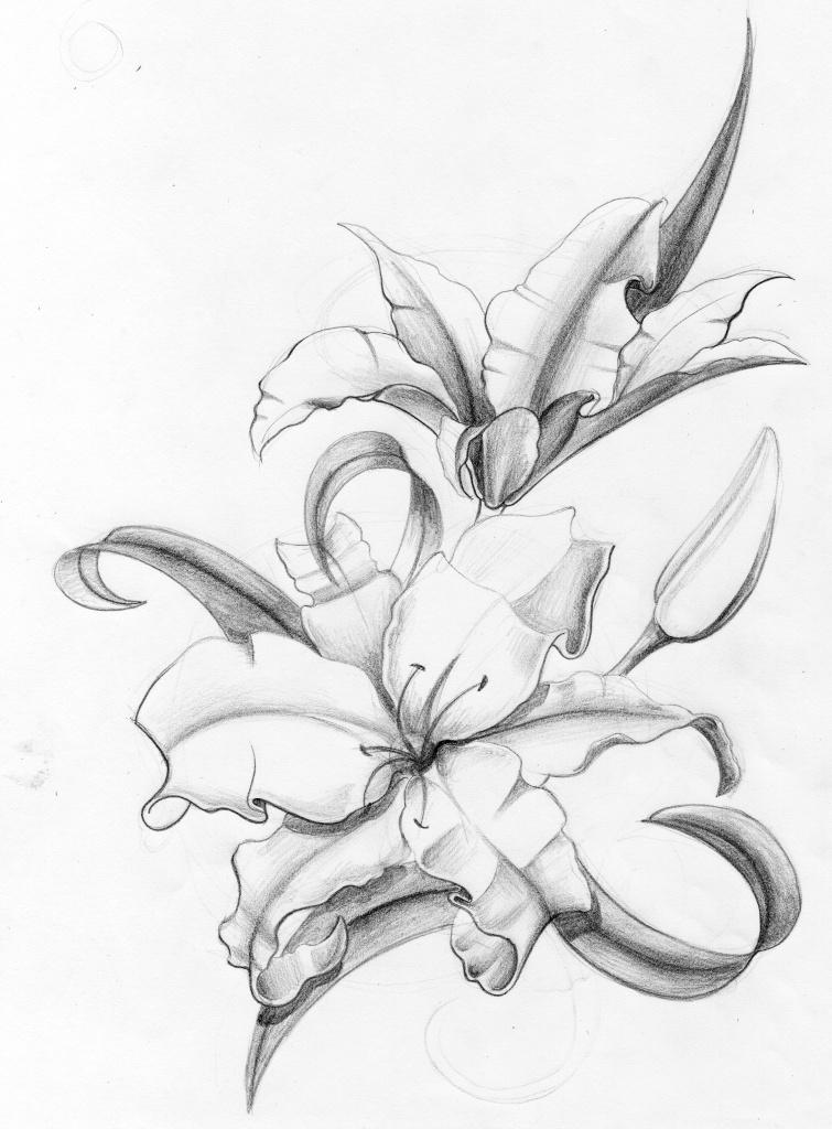 Orchidee Sauvage Tatouage